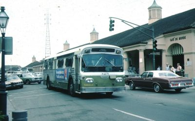 Desire Line 1978