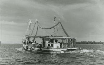 Barataria Shrimp Trawler